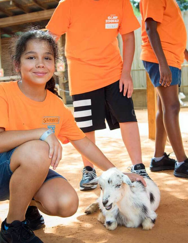 Houston Zoo - The Brown Foundation